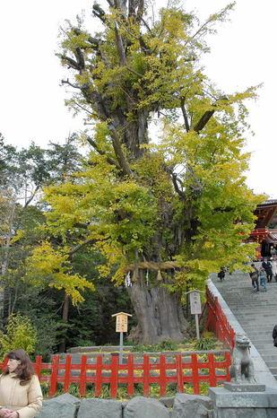 Kamakura_030_2